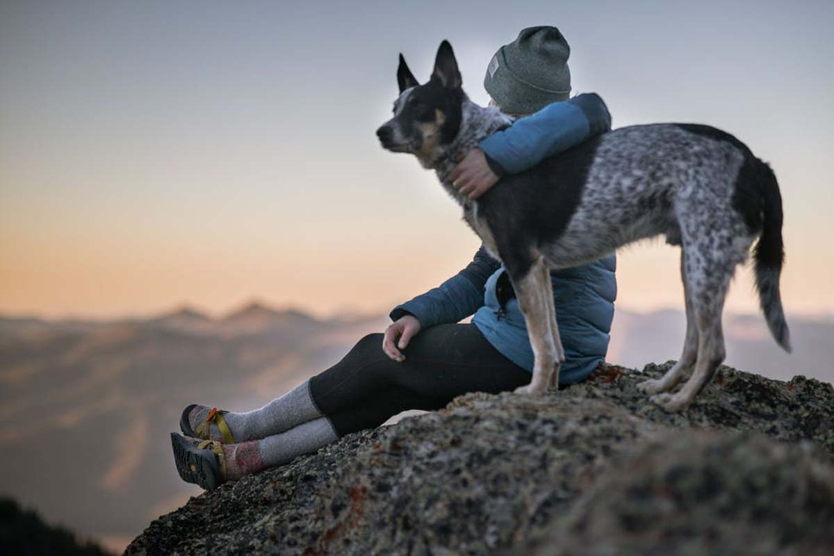 Dog and owner sitting on top of a mountain